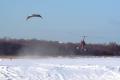 snowkite-34