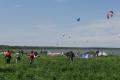 kite-sammer-57