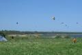 kite-sammer-61