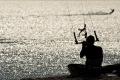 kite-sammer-9